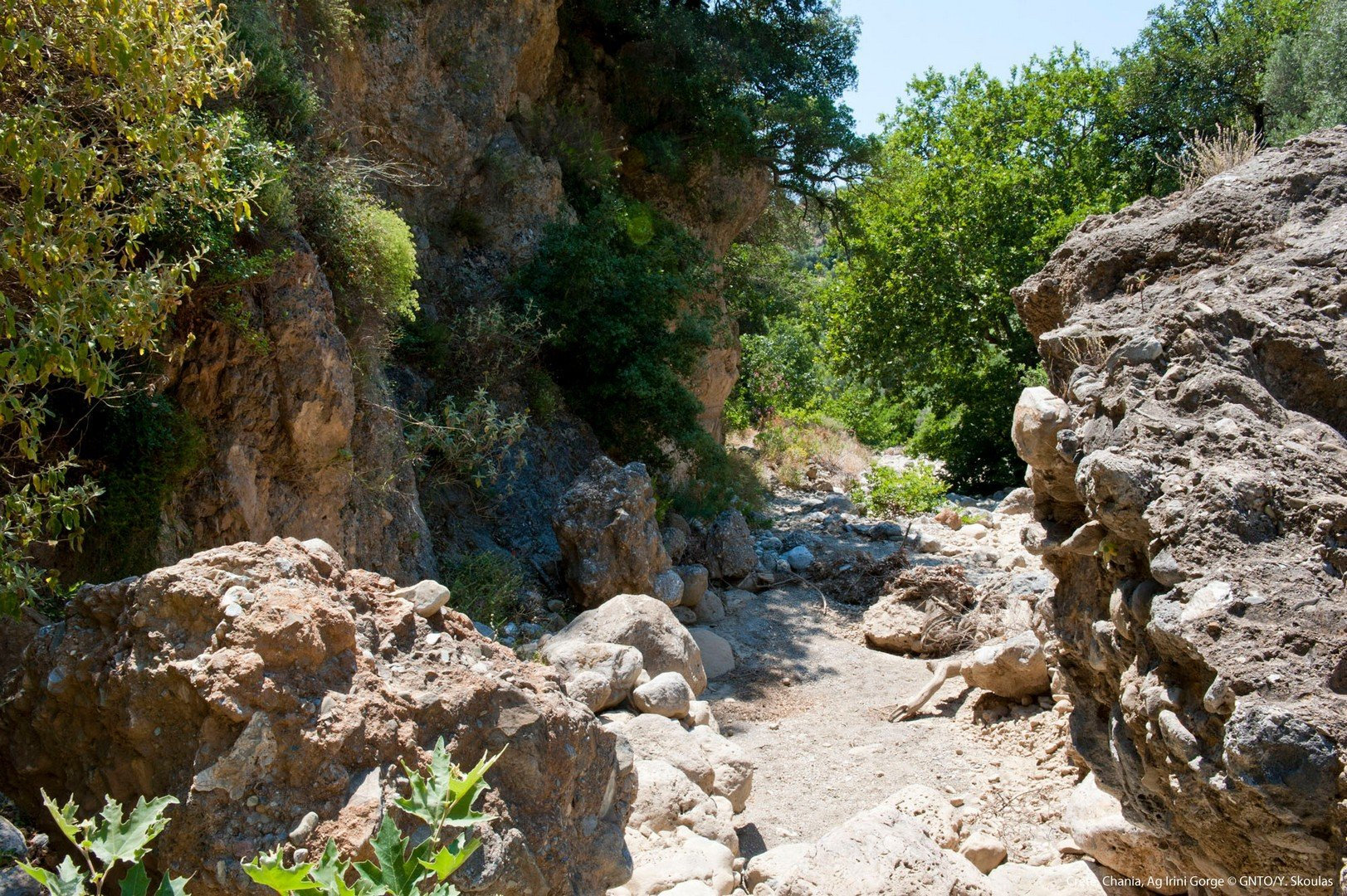 Ag. Irini Gorge, Sougia - Chania